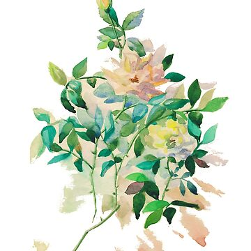 Watercolor roses by AgniArt