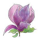 Magnolia flower by Andreea Dumez