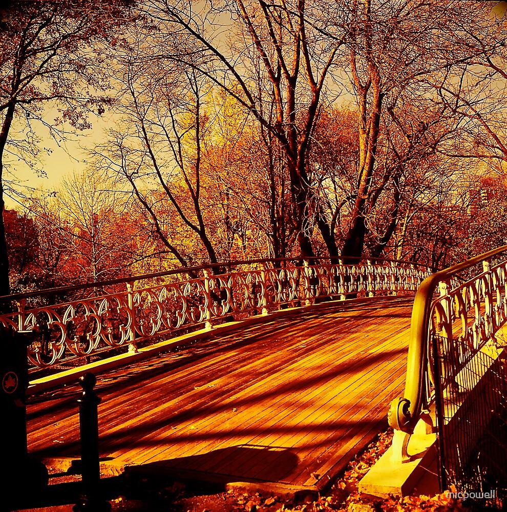 Bridge No. 28 by micpowell