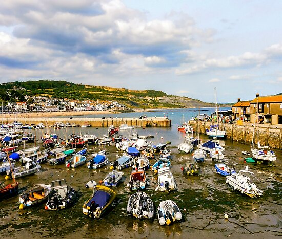 The Cobb, Harbour by ScenicViewPics