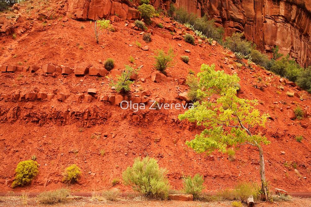 Tree and Red Rock, Zion National Park, Utah by Olga Zvereva