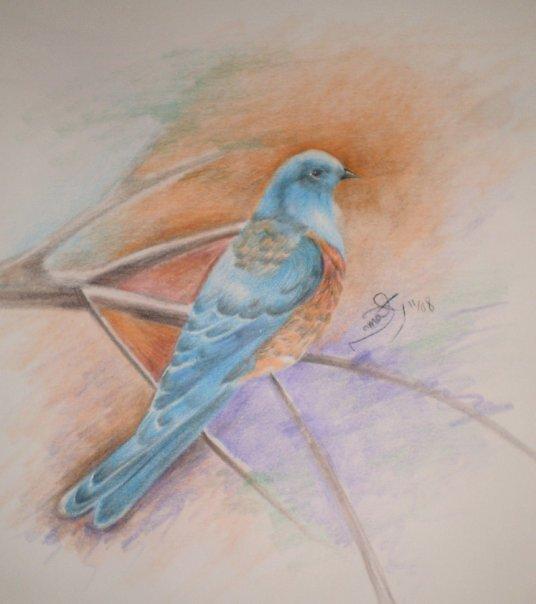 blue bird by Nnaseri