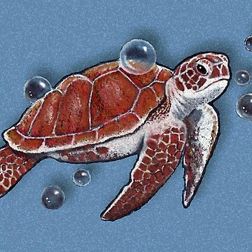 Sea Turtle Swimming with Bubbles by Joyce
