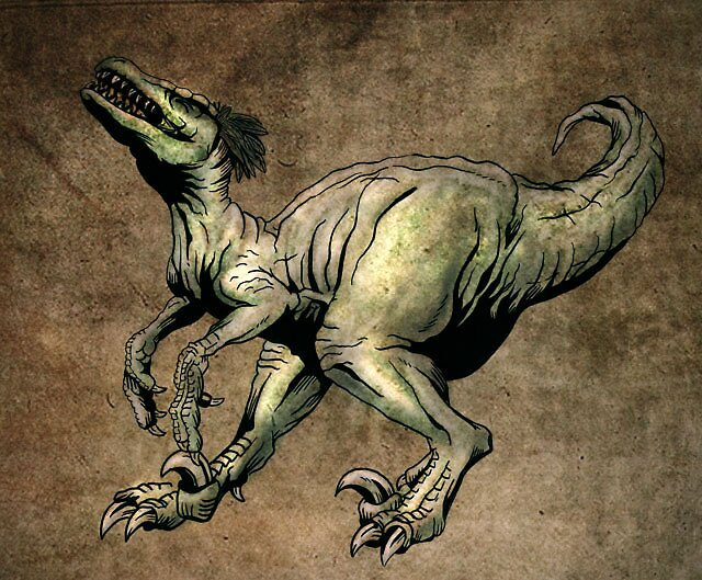 If a raptor could laugh.. by Dana Sibera