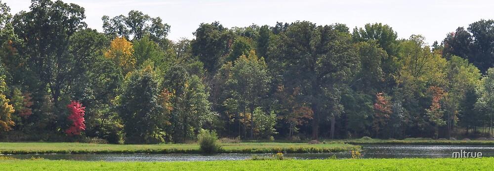 Autumn Lake Panorama by mltrue