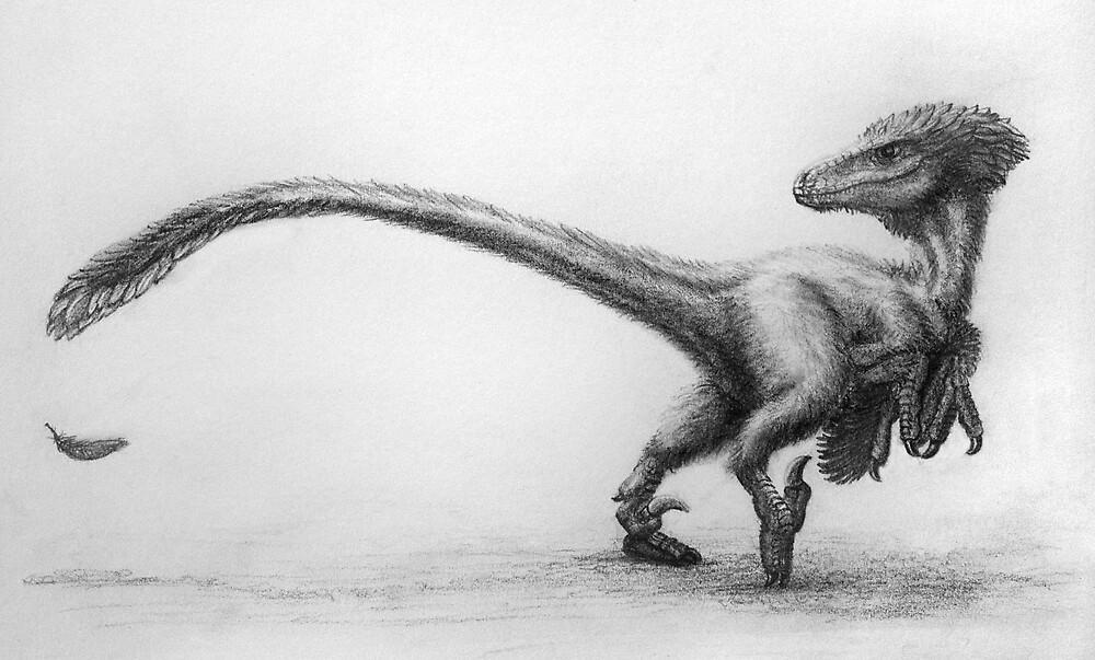 Raptor rendering by Dana Sibera