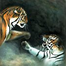 Cat Fight by Tom Godfrey
