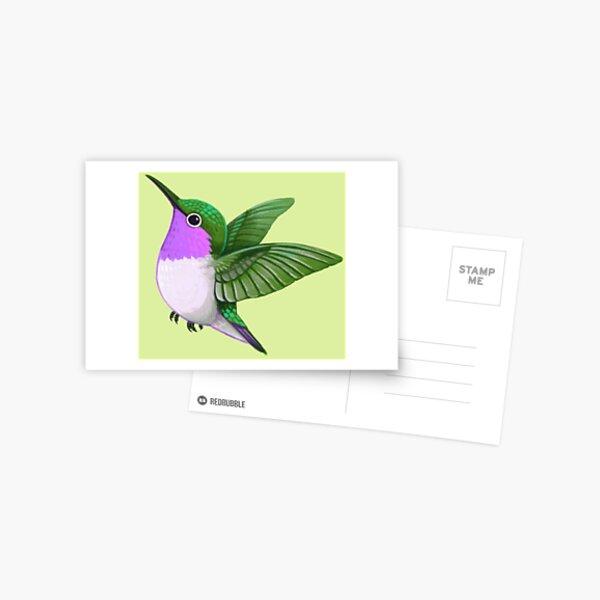 Pride Birds: Woodstar Hummingbird Postcard