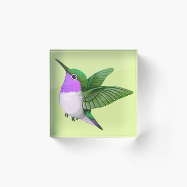Pride Birds: Woodstar Hummingbird Acrylic Block