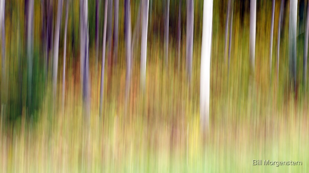 Spirits of Autumn by Bill Morgenstern