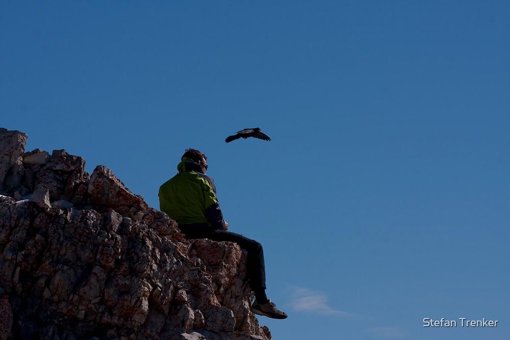 free like a bird by Stefan Trenker