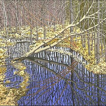 Sky in Cora's Marsh - Neil Welliver 1987-88 by CodyBradley