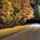 Autumn road by Carlos Restrepo