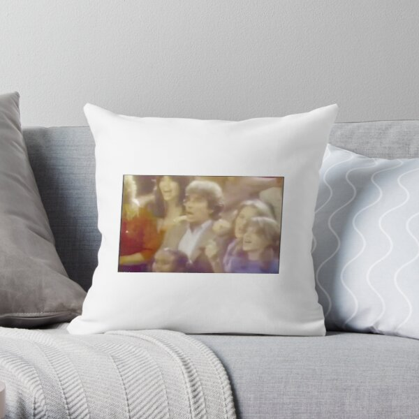 The Fonz Pillows Cushions Redbubble