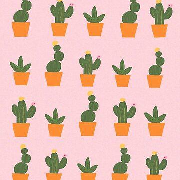 Succulents by azaleas