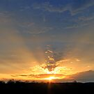 *CREPUSCULAR RAYS by Van Coleman