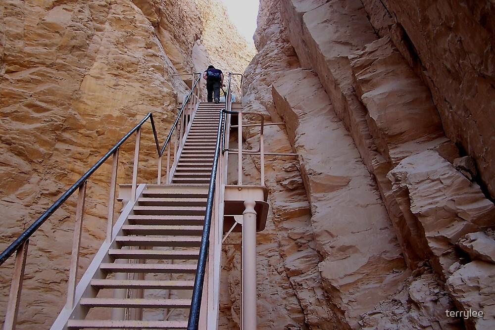 long climb by terrylee