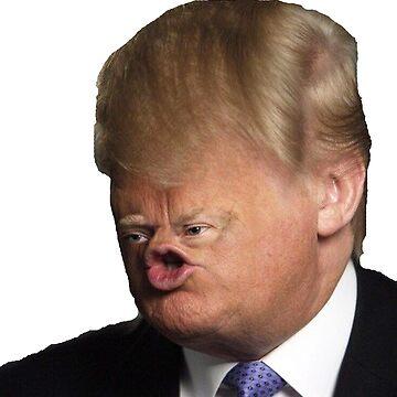 Donald Trumpf by adjua