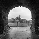 pevensey castle by Janis Read-Walters