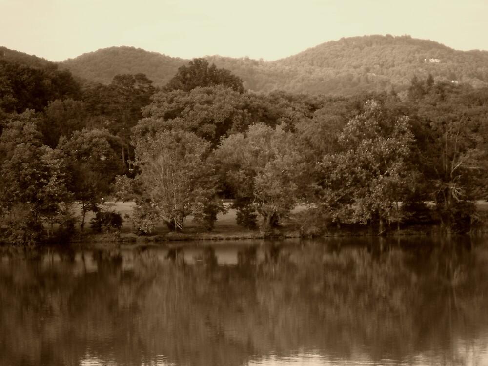 Beaver Lake by Works By  Barbara