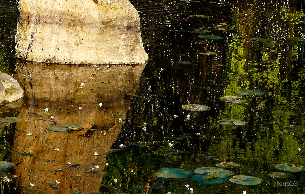 rock reflection by tego53