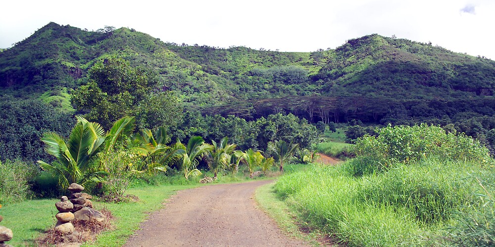 Backroads Kauai by Dennis Begnoche Jr.