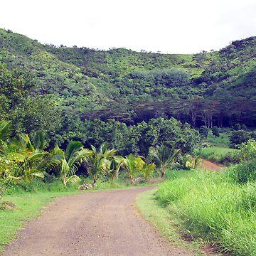 Backroads Kauai by psart