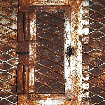 Rusted Door by Falln