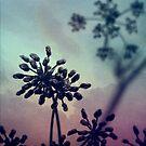 Gravity Bloom by James McKenzie