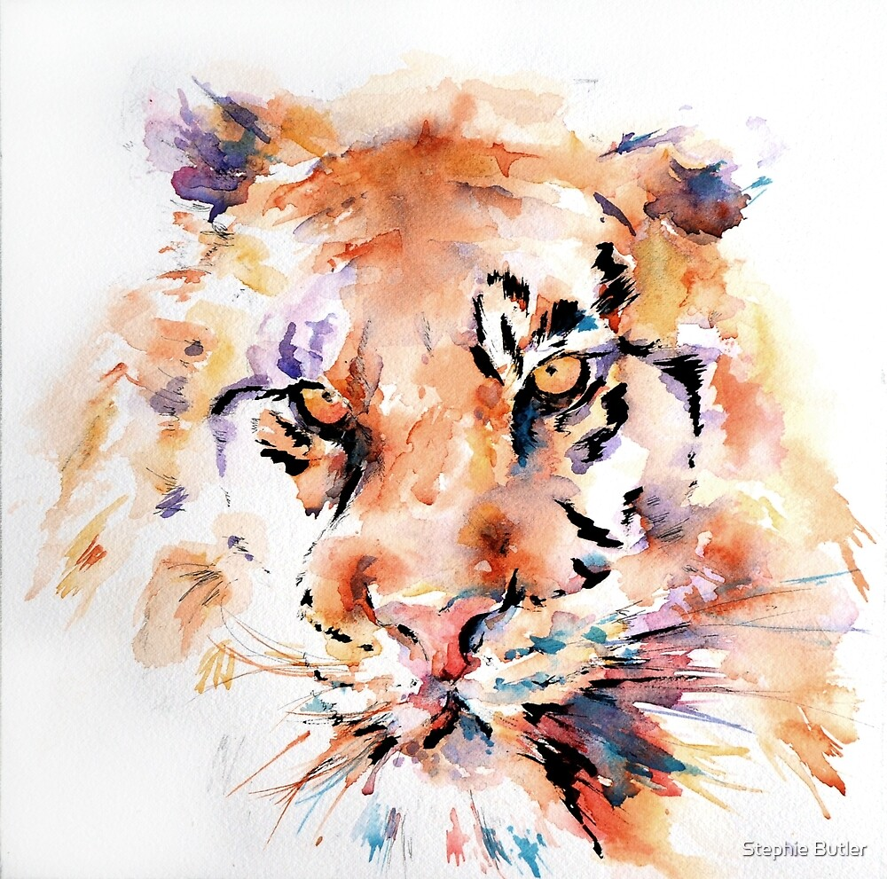 Panthera Tiger I by Stephie Butler