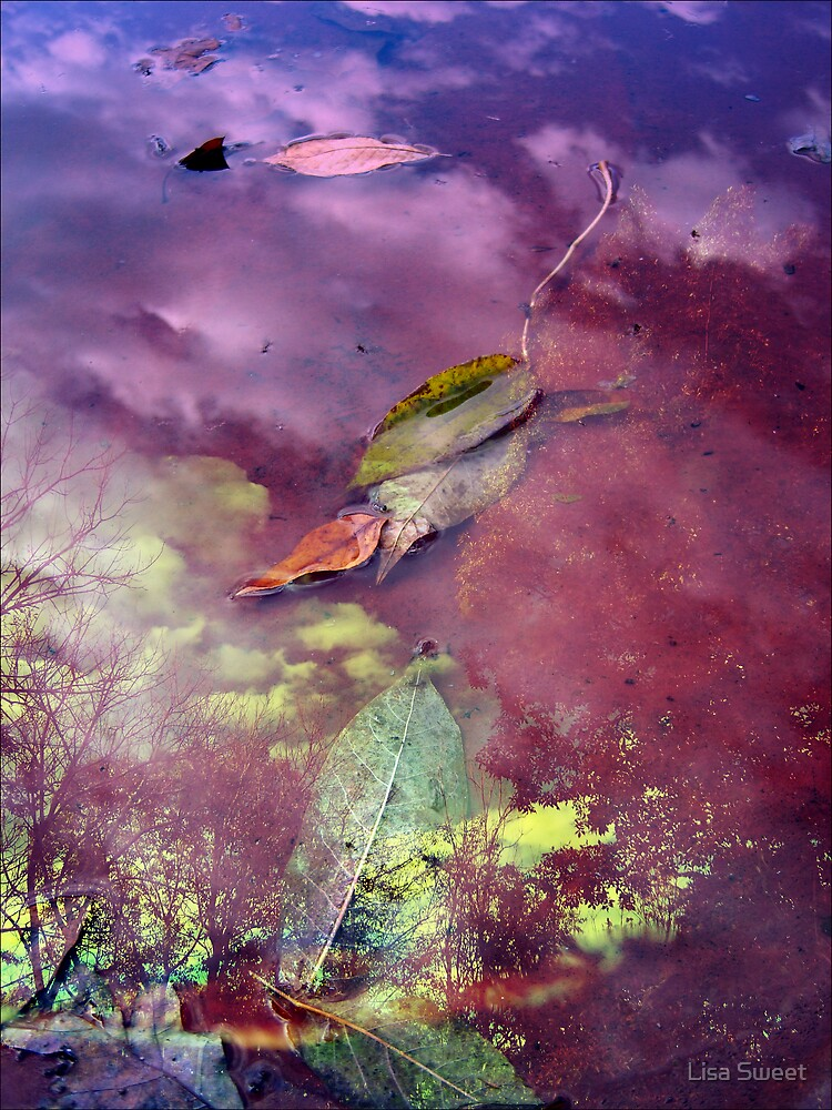 Falls mirror by Lisa Sweet