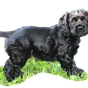 Black Spaniel Pup by BlueNorth