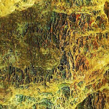 Mossy Stones by Falln