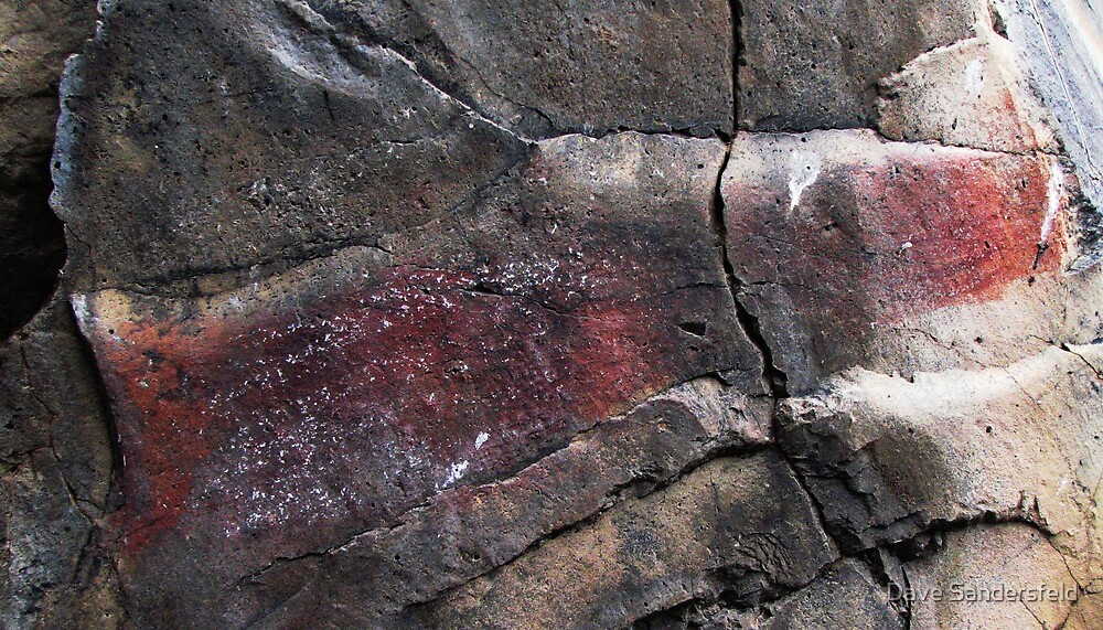 Rare Sockeye Salmon Pictograph by Dave Sandersfeld