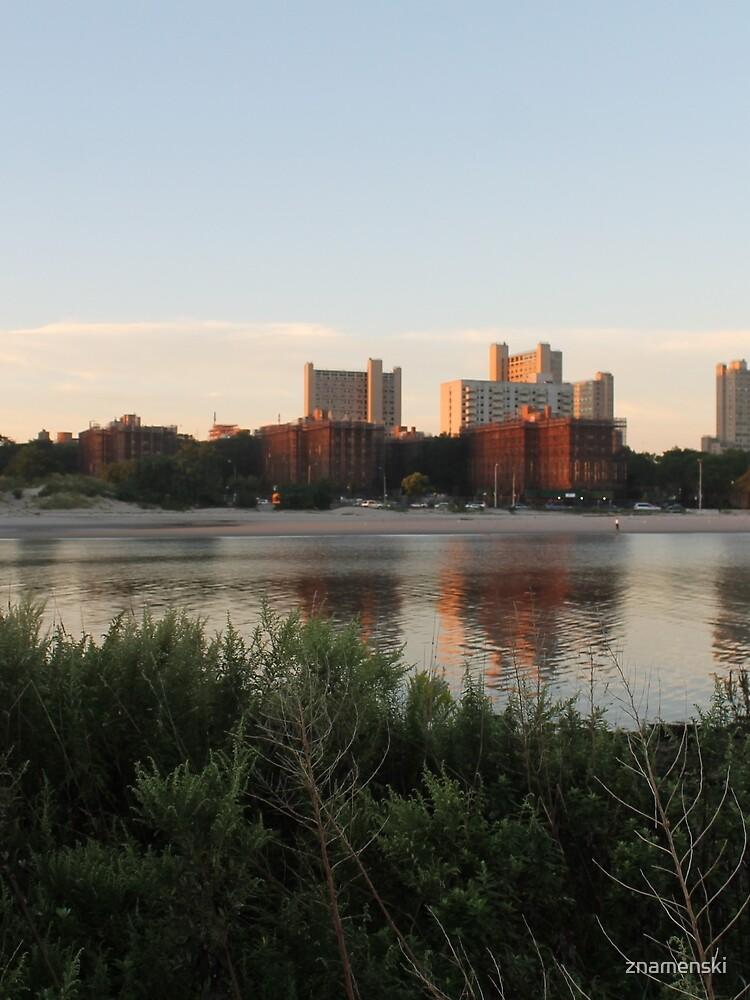 #city #skyline #water #cityscape #urban #river #downtown #sky #panorama #building #architecture #buildings #park #skyscraper #blue #view #reflection #sunset #lake #travel #town #sunrise #landscape by znamenski