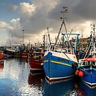 Mallaig Harbour by Jamie  Green