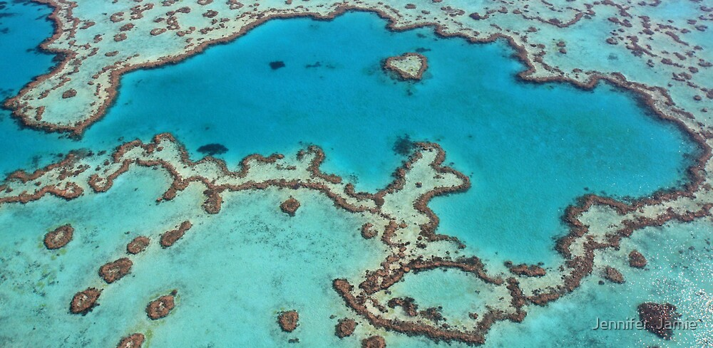 Heart Reef by Jennifer  Jamie