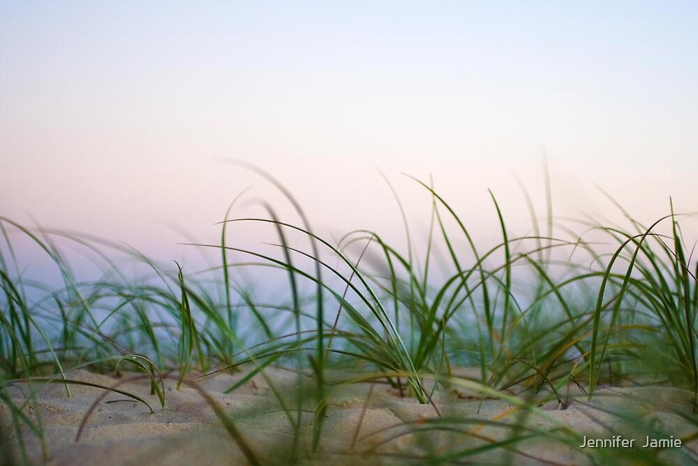 Dune Grass by Jennifer  Jamie