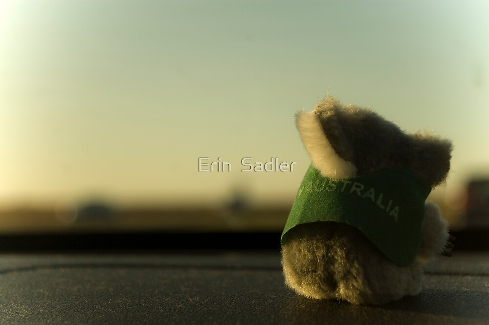 Along for the Ride by Erin  Sadler