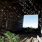 View Through Falling Down Barn by H A Waring Johnson