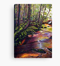 Blue Mountains Stream Canvas Print