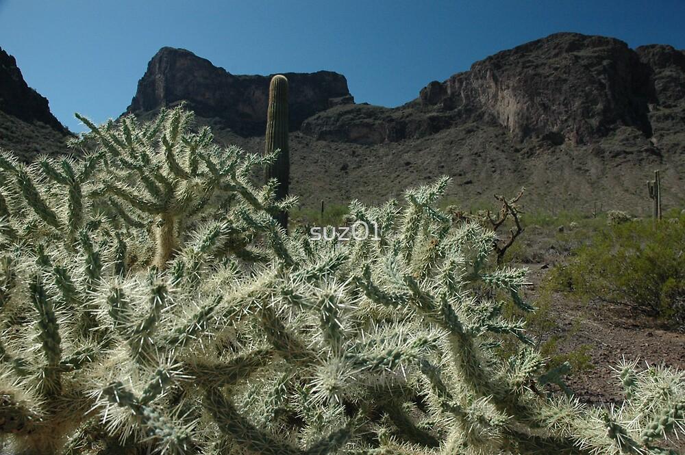 Arizona Plantlife by suz01