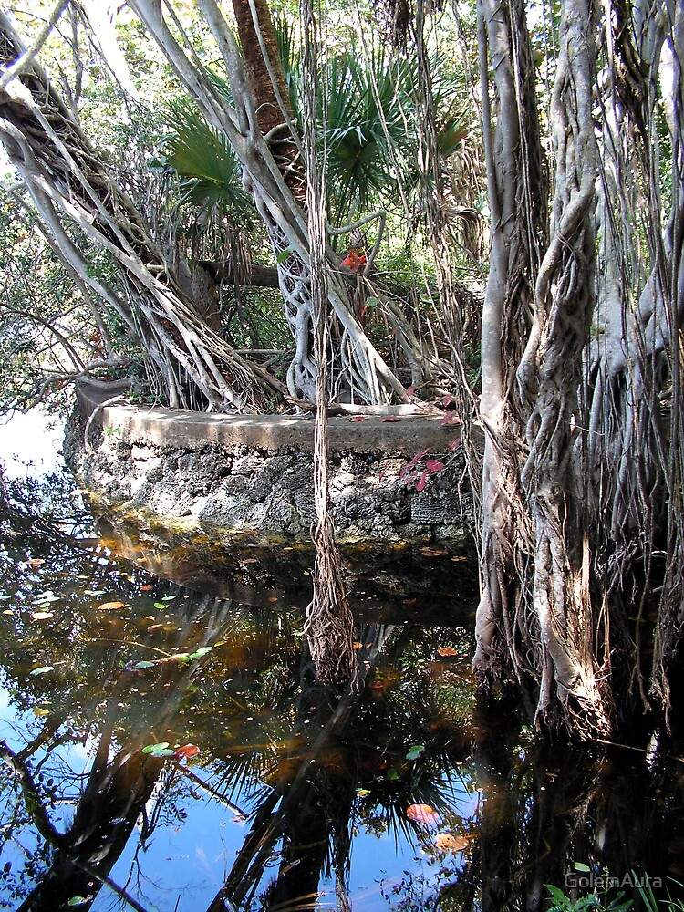 Mangrove Swing Vine by GolemAura
