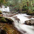 Liffey Falls by Alex Wise