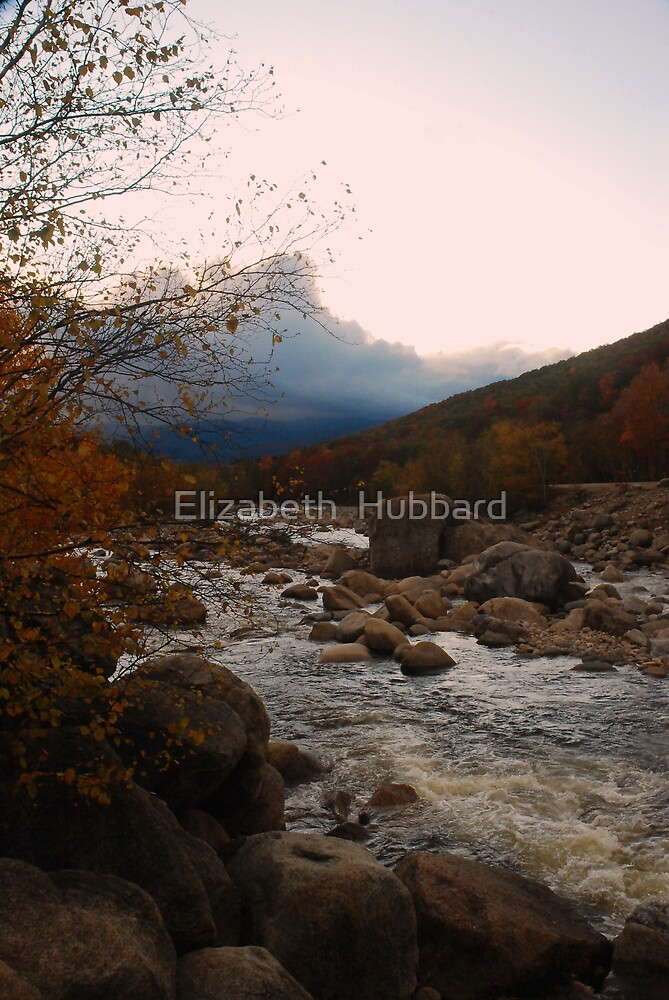 Tourism by Elizabeth  Hubbard