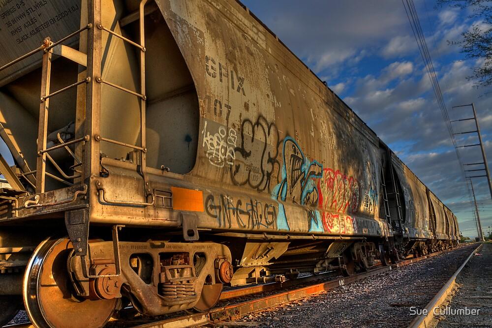 Down the Rail by Sue  Cullumber