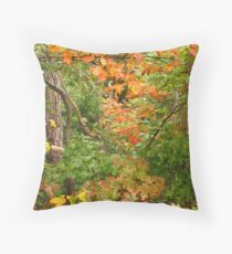 Walking down the rustic road Throw Pillow