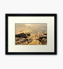 Rough Spun Gold -  Framed Print