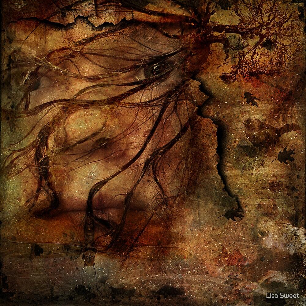 Through my minds eye by Lisa Sweet