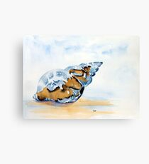 The Glass Shell Canvas Print